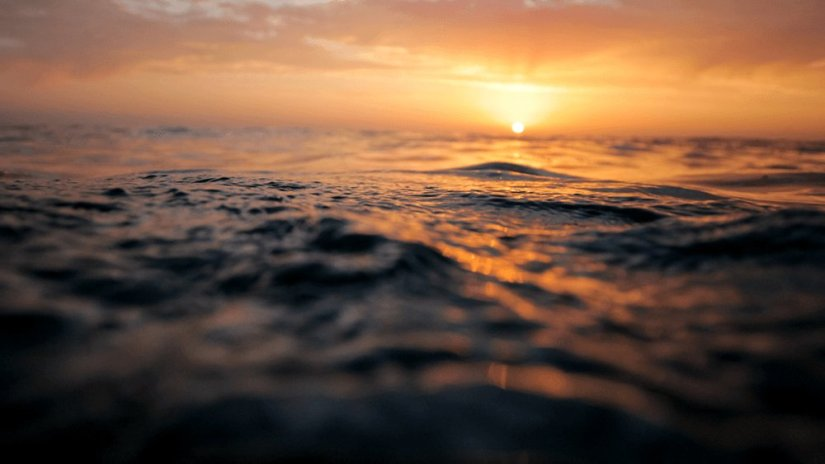 Treading Water in the Sea ofLife